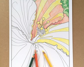 flower coloring page, hibiscus coloring sheet, instant download art, adult color pages