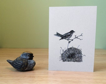 Bird nest note card. Natural history note card with ovenbird and nest, with text on the back about ovenbirds.