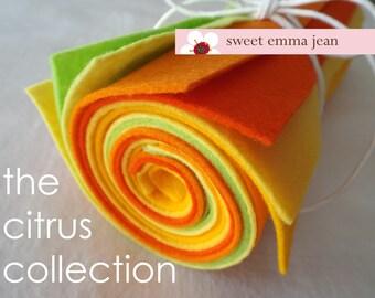 9x12 Wool Felt Sheets - The Citrus Collection - 8 Sheets of Felt