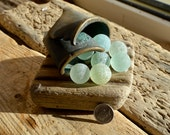 WHELK - 12 Sea Glass Codd Marbles - Sea Metal Base - Driftwood - Scottish Beach Finds