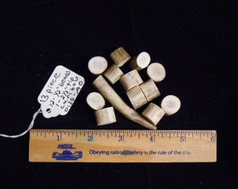 """13 Pieces including 12  Consecutive Caribou Antler 1/2""""  Beads Blanks and the 1, 2.5"""" Caribou Antler Tip for Jewelry or Crafts -O13pAO"""