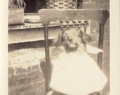 DINNER TIME DOG Sitting On Chair Wearing Napkin Photo Circa 1920s
