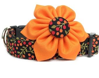 Dog Collar & Flower / Fall Dog Collar / Orange Black Dog Collar / Black Floral Dog Collar / Girl Dog Collar / Collar with Flower