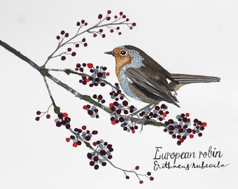 Winter Robin  Holiday Watercolor Print Available in 3 sizes
