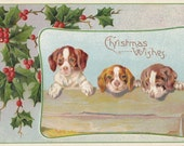 Christmas Puppies- 1910s Antique Postcard- Edwardian Christmas Wishes- Holly Berries- Holiday Dogs- Beagle Puppy- Paper Ephemera- Used