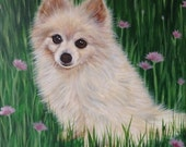 """12"""" x 12"""" custom pomeranian portrait painting from photo on canvas hand painted art"""