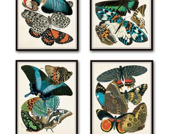 Butterfly Print Set, Seguy Butterfly Prints, Art Nouveau,Butterflies, Giclee, Print Sets, Wall Art, Illustration, Collage, Art Deco