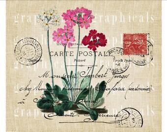 Flower clip art Paris carte postale Instant graphic Digital download image for iron on fabric transfer burlap decoupage pillow No 1869