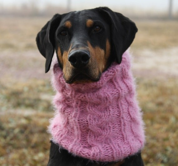 braided cables dog snood pattern for medium to large dogs