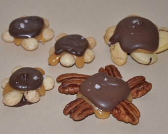 Turtles Chocolates Pecan Nut Clusters Caramel Cashew Almond Gift Assorted Sample  Box Edible Gift