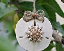 Sand Dollar Ornament, Natural Sundial Spiral Seashell Mini Conch Shells Personalize Option Holiday Coastal Mermaid Beach Decor TheSandbar