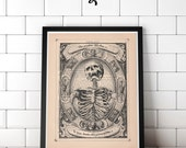 A Skeleton by Alexander Mayfair (1605) Macabre Print on an Unframed Upcycled Bookpage