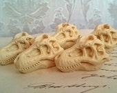 5 T-rex Tyrannosaurus Dinosaur Skull Cabs Resin Cabochon Taxidermy Animal Skull Ivory 36x25mm 5 PIECES Gothic Fossil Resin Plastic Flatback