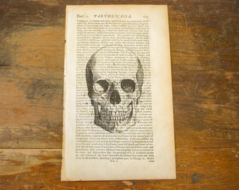 "Authentic 1676 Book Page with Skull Print Vintage Halloween Decoration Engraving Original Art 12-1/2"" by 7-1/2"""
