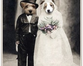 Note Card, Anthropomorphic, Photo Collage, Dog card, Unique Art Card, Funny Card, Wedding Card, Dog Wedding Couple
