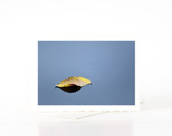 Sympathy Card, Blank Photo Greeting Cards, Yellow Leaf Floating on Water, Minimalist Photography Cards