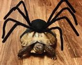 Pet Tortoise Costume, Pet Costume, Tortoise Costume, Turtle Costume, Spider Costume