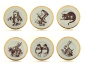 6 Recycled Alice in Wonderland March Hare Rabbit Mad Hatter Vintage Porcelain Plates Home Decor Sugar-White Romantic
