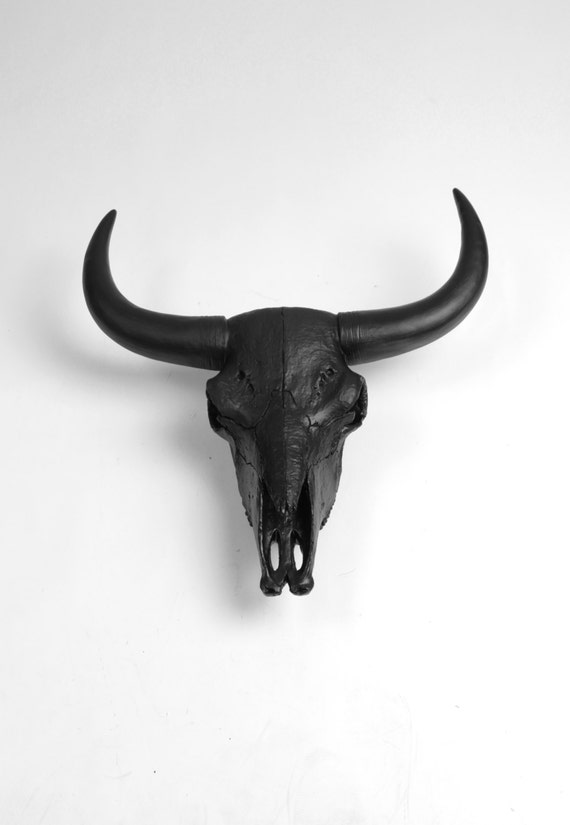 The X-LARGE Barnes - Extra Large Black Resin Bison / Buffalo Skull Head- White Faux Taxidermy- Chic & Trendy Cow Skull - XL Bison Buffalo