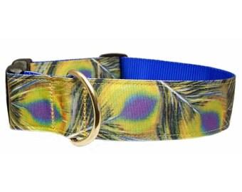 "Peacock Feather Dog Collar 1.5"" X-Large Dog Collar"