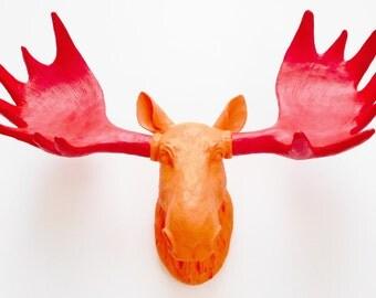 Faux Taxidermy, Moose Head, Faux Moose Head, Faux Moose Head, Painted Animal Head, Fake Moose Head, Animal Trophy Mount, Moose Decor.