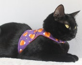 Candy Corn Jacket for Cat