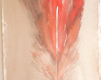 Feather painting/ Coral red feather illustration/ Watercolor original only. Coral beige painting/ Small watercolors 7,5 x 11/ Home decor/