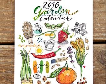 2016 Calendar. Illustrated Garden. 5x7. Seasonal fruit and vegetables. Gift for gardener. Food art. Desk or wall calendar. Home decor.