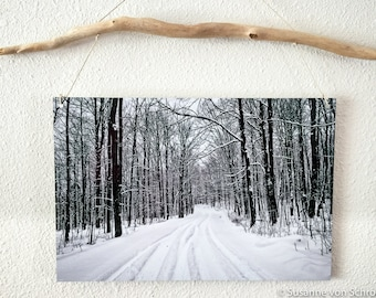 Metal Print, Black & White Photography, Winter Landscape, Snowy Road, Photo Cards, Wisconsin, Forest Road, Trees, Snow, White, Wall Decor