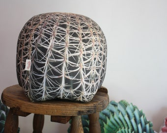 Barrel Cactus pillow made to order