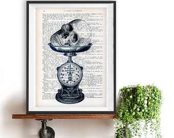 Skull Scale vintage drawing book art dark goth day of the death vintage art print wall art poster decor Halloween, gift for him, gothic