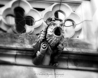 Owl Gargoyle - Gargoyle Wall Art - Gothic Photo - National Cathedral