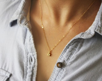 CZ Star Necklace on a Gold or Silver Chain / Star Necklace / Tiny Star Necklace