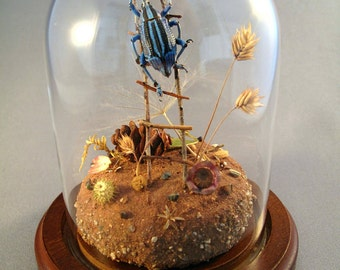 Weevil Climbing Ladder, Miniature Insect Diorama