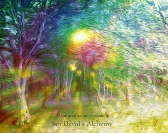 Magical Woodland Art Print, Psychedelic Trees with Orbs Photography Print, Surreal Dreamy Forest Wall Decor, Multi-Colored Ethereal Tree Art