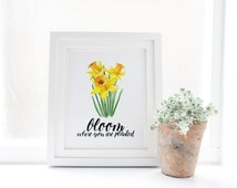 Bloom Where You Are Planted Print » Daffodil Art Print » Inspirational Print » Floral Watercolor Wall Art » Spring Art Decor » Digital Print
