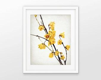Yellow Flowers Art Print - Yellow Flower Decor - Tree Blossom - Flower Print - Single Print #1617 - INSTANT DOWNLOAD