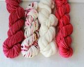 Weaver's Yarn Pack 040 - Serene Fiber Arts Mini Skein Pack for Weaving - 100g