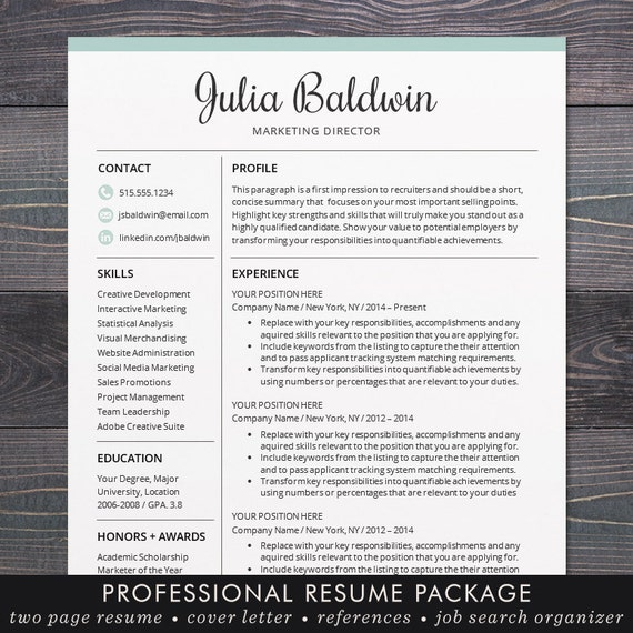 professional resume cv template mac or by