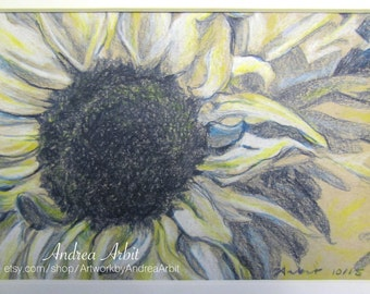 "Sunflower in Navy Blue and Yellow - 5""x7"" Colored Pencil Drawing"