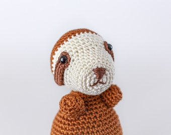 Sloth Amigurumi - Crochet Sloth - Sloth Stuffed Toy - Sloth Stuffed Animal - Sloth Plush - Sloth Toy