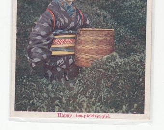 Japan Tea,Happy Tea Picking Girl,Traditional Clothing/Photographic Postcard/Unused