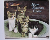 Vintage  (1970s) children's book, 'How Kittens Grow' by Millicent E. Selsam; photographs by Esther Bubley