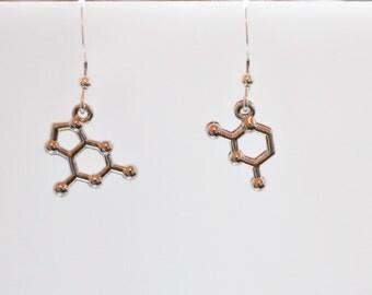 DNA Base Pair Molecule Earrings or Necklace, Friendship Earrings or Necklace, Sterling Silver Earrings, Silver Base Pair Chemistry Earrings