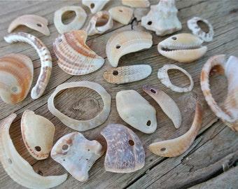 Drilled Sea Shells, Sea Shell Beads, Sea Shell Fragments, Genuine Sea Shells, Greek Shells, Craft Supplies, Jewelry Supplies, Beach Finds,