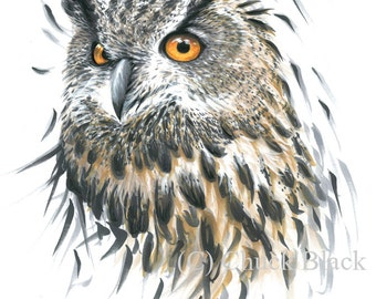 "Long-eared Owl Limited Edition Print - ""Regalness"" by Chuck Black"
