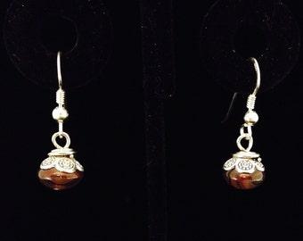 Deeply Colored Drop Earrings (EJ38)