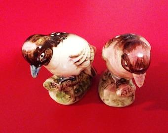 Bird Salt & Pepper Shakers - Vintage Salt and Pepper Shakers - Ceramic Birds - Japan Ceramics