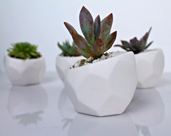 Geometric Succulent Planter, Minimal Pot