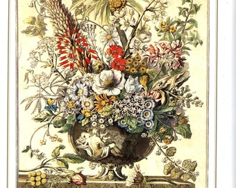 December Flower Arrangement- Bowles Casteels Botanical Illustration Floral Art Print- newborn birth month wedding anniversary gift idea